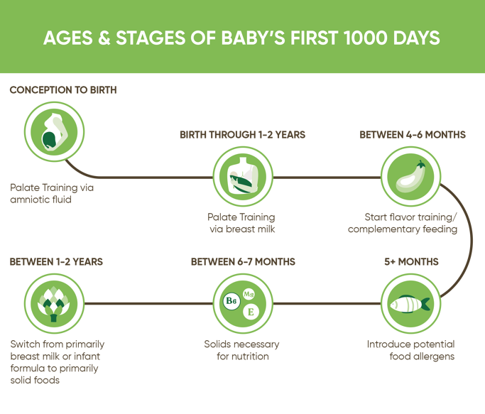Good Feeding Ages Stages First 1000 Days